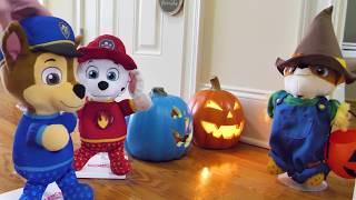 Paw Patrol बच्चों के लिए हेलोवीन वीडियो!