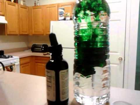 Liquid Chlorophyll Drink Liquid Chlorophyll Biblical