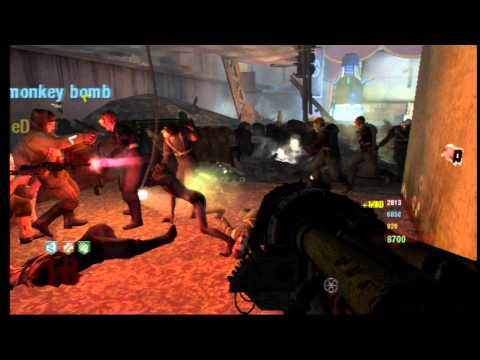 Black Ops Zombies: 150 Revives