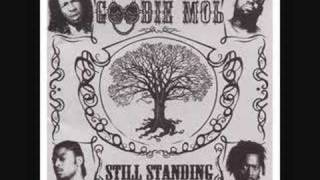 Watch Goodie Mob See You When I See You video