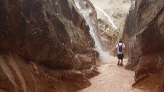 Flash Flood Caught on Camera! Little Wild Horse Slot Canyon