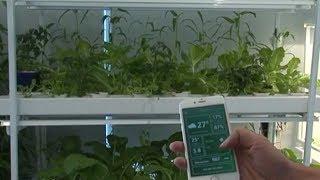 Chuyển động truyền thông: Ứng dụng công nghệ thông tin trong phát triển nông nghiệp xanh