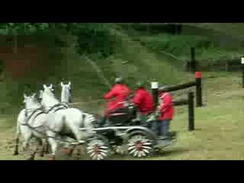 Pippa Bassett Carriage Driving Trials