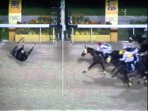 Perhaps this is the horse racing accident you never seen in your live.