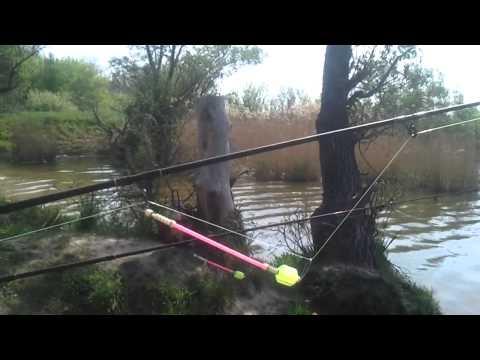 рыбалка на карася сетью