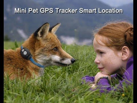 Mini Waterproof Pet GPS Tracker
