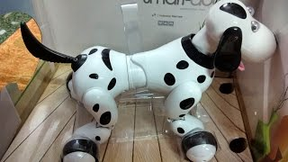 Remote Control Robotic Smart Dog   2 4GHz - Unboxing and Demo