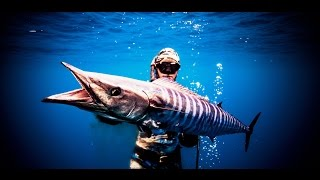 Spearfishing to Wahoo with Jorge Mantilla - Itztv Productions