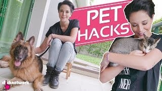 Pet Hacks - Hack It: EP69