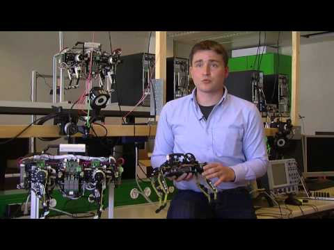 Cheetah-Cub Quadruped Robot Runs Like A Cat