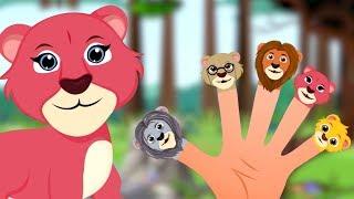 Lion Finger Family   Children Songs & Nursery Rhymes   Kids Videos