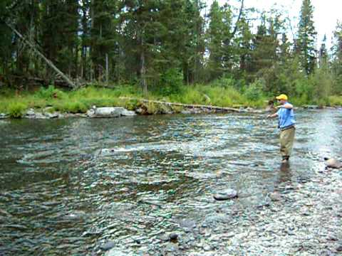 Fishing for salmon on russian river in alaska youtube for Russian river fishing