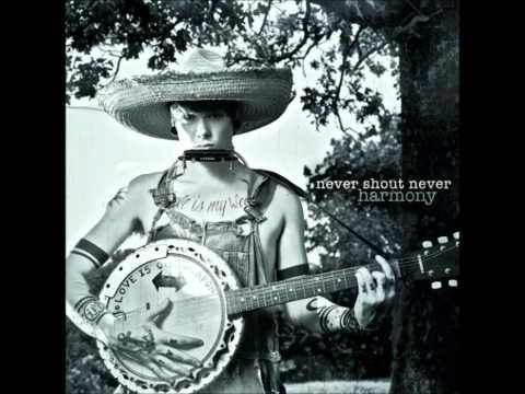 Lousy Truth- Never Shout Never