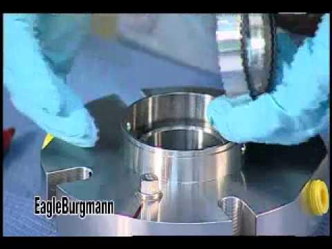 Mechanical Seal Working Mechanical Seal Teardown And