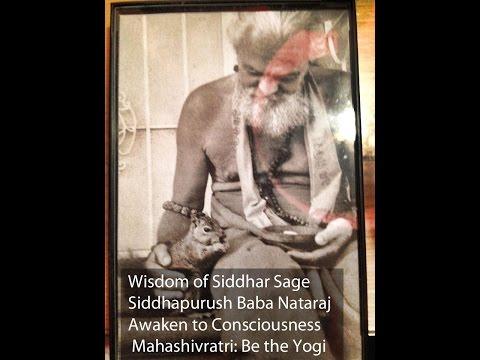 Siddhar Sage Baba Nataraj: Wisdom of Mahasivratri 2015