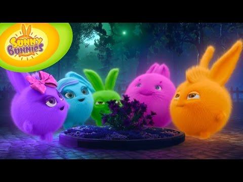 Cartoons for Children | Sunny Bunnies 107 - Fireflies (HD - Full Episode)