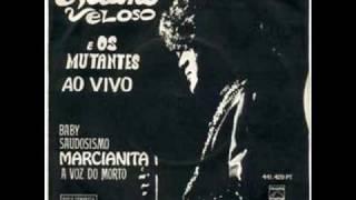 Vídeo 380 de Caetano Veloso
