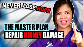 How To REVERSE Kidney Disease 2020 - The MASTER PLAN [CKD Treatment]