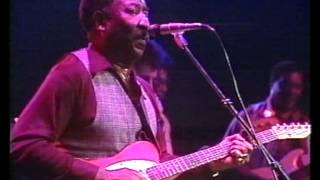 Muddy Waters Live Westfalenhallen Dortmund Germany 10 12 1978