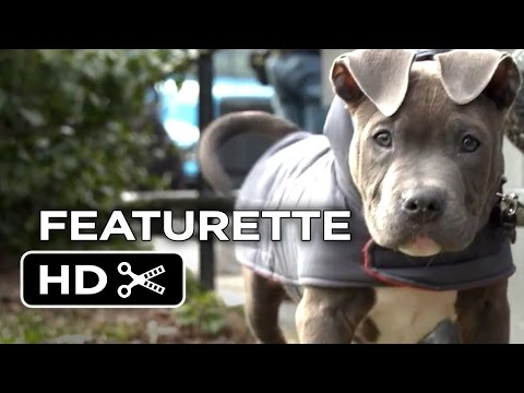 The Drop Featurette - Rocco The Dog (2014) - James Gandolfini, Tom Hardy Movie HD