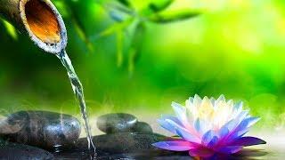 Relaxing Music, Meditation Music, Sleep Music, Reiki Healing Music, Yoga, Relax, Zen Music,☯1940