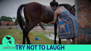 Funny Video Top 10 Vital Video | Best Funny Video Pranks 2018 | New WhatsApp Funny Video Ep 4