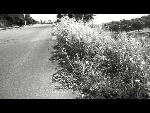 Longskate Arbus: il cane pufoente
