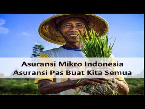 VIDEO : asuransi mikro indonesia - asuransi mikro indonesia, sederhana, mudah, ekonomis, segera (smes) ...