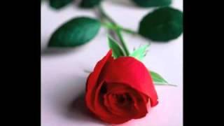 Watch Carlos Vives Rosa video