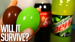 Eggs In Coke & Mountain Dew For 1 Year