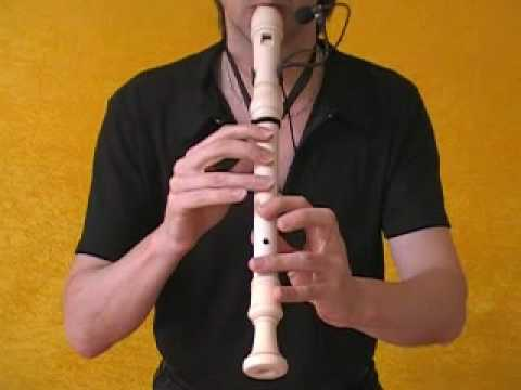 Some Skunk Funk (Mickael Brecker's chorus) performed by Benoît Sauvé/Recorder