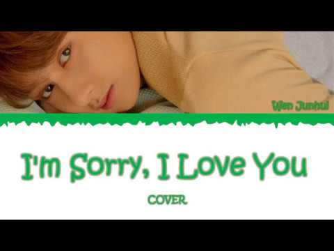 Download Wen Junhui SEVENTEEN 세븐틴 - 对不起,我爱你 I'm Sorry, I Love You COVER S/가사 Mp4 baru
