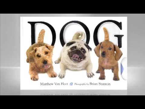 Matthew Van Fleet: Dog