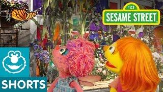 Sesame Street: Butterfly Flapping Fun | Julia & Abby Cadabby