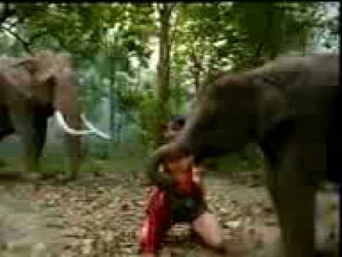 Tony Jaa Mv Revenge Of A Thai Man Tom Yum Goong Reg 27056 video