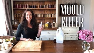 How to Make a Mould Killer