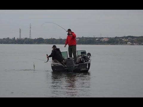 рыбалка в дельте или 2016