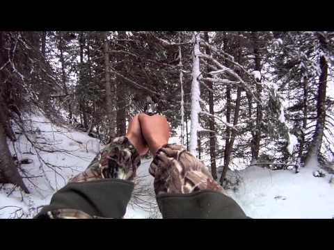 NW Colorado Mountain Lion Hunt With Pistol 2012