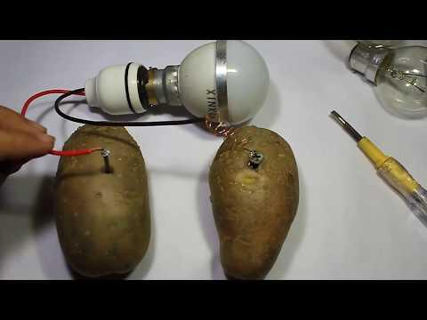 Free Energy with potato thumbnail