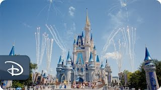 Canadian Residents : 25% Off Select Walt Disney World Theme Park Tickets