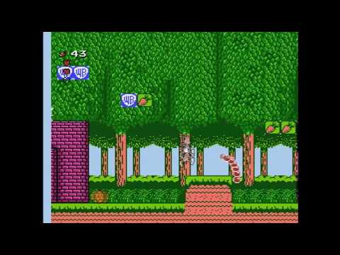 Reaper's Review #256: Bugs Bunny's Birthday Blowout (NES)