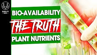 The Truth About Bioavailability - The REAL Nutrients In Plants