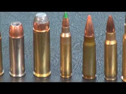 Best Gun/Caliber's For Self Defense