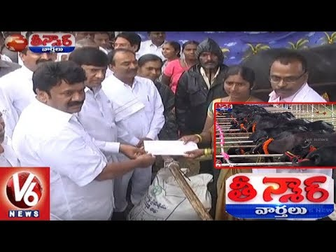 Buffalo Distribution Scheme Launching Event In Warangal | Teenmaar News | V6 News