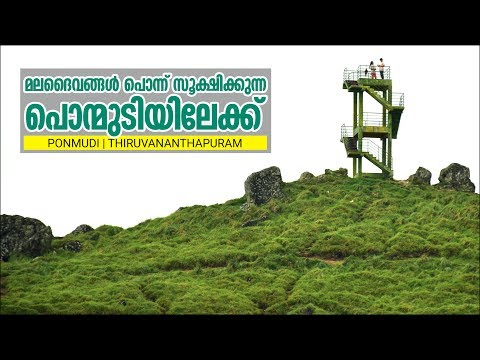 Monsoon Media | Travel Stories-1 | Ponmudi | Kerala | India | Hill Station | Travel Video Guide