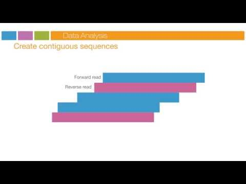 Illumina Sequencing Technology