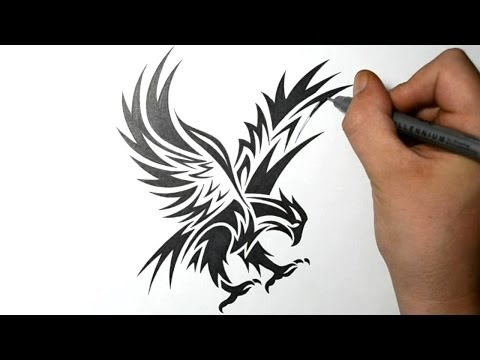 How to Draw an Eagle - Tribal Tattoo Design Style