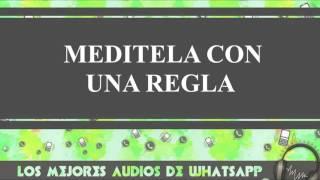 Meditela Con Una Regla - Conversaciones De Whatsapp - Los Mejores Audios Y Videos Whatsapp