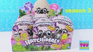 Hatchimals Twins Season 3 Full Box Blind Bag Opening Surprise Egg Toys | PSToyReviews
