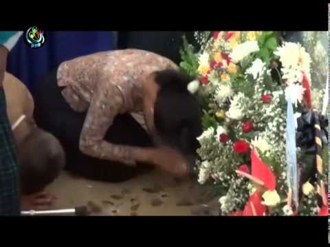 DVB - NLD leaders tribute for U Win Tin
